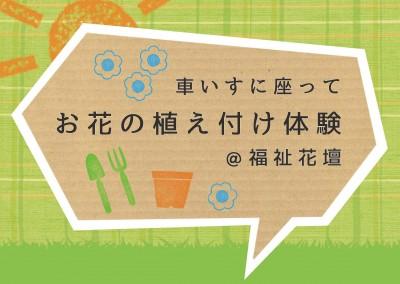 アイキャッチ福祉花壇