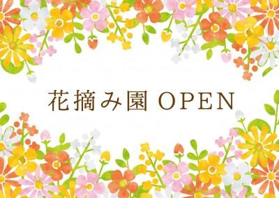 9月の花摘み園