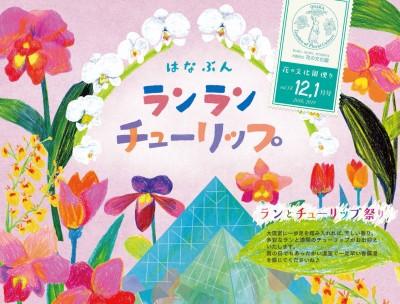 nyu_12-1omote_s