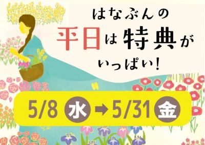 5月平日特典_thum