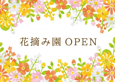 4月の花摘み園