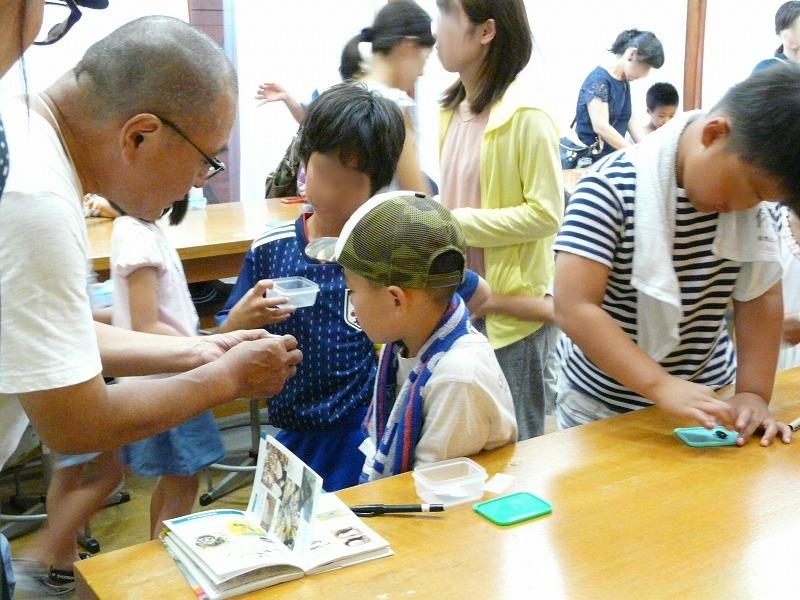 s-昆虫教室②